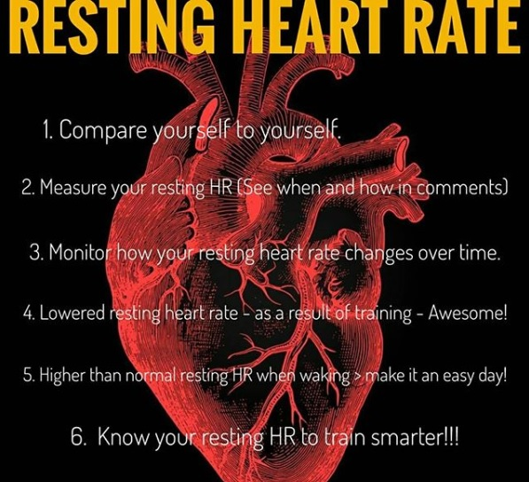Resting Heart Rate – Compare yourself to yourself!